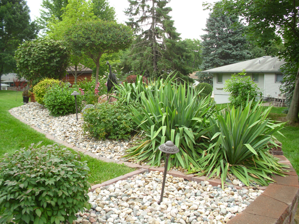 July 2016 yard of the month