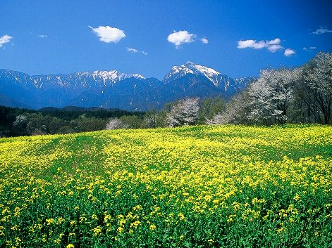 Scenery in Yamanashi City, Japan